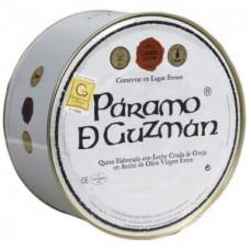 Paramo de Guzman en aceite de oliva 2'5 Kgr.